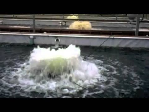 Kasco Pond Aerators And Bubblers