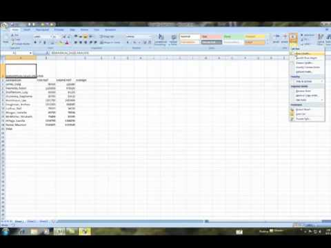 Adjusting Columns and Rows in Excel