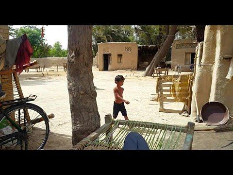 Natural Village Life In Punjab Pakistan