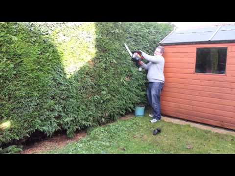 Chain saw to cut the hedge