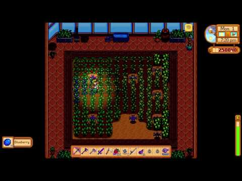 How to get more Crops from multiple yields - Stardew Valley