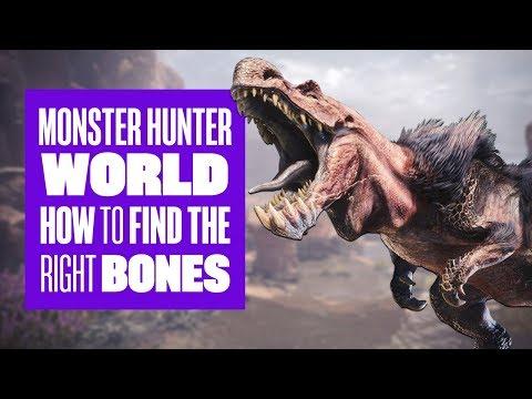 How to find bones in Monster Hunter World: Monster Hunter World PS4 gameplay