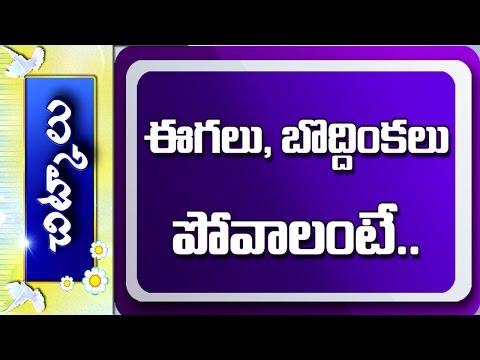 How to Get Rid of Flies, Cockroaches in Kitchen || Vanitha Nestham || Chitkalu || Vanitha TV