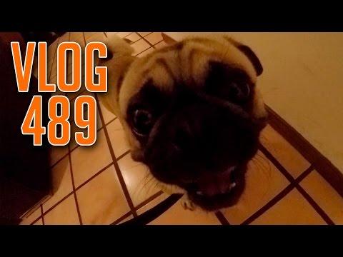 Vlog 489 | Un Día con Alfalta90