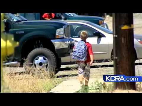 Mountain Lion Scare Worries Parents