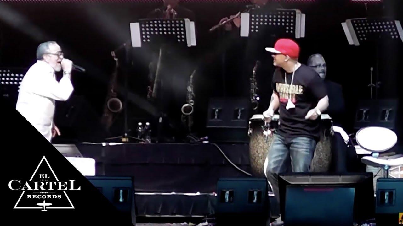 DADDY YANKEE & ANDY MONTAÑEZ (Live)