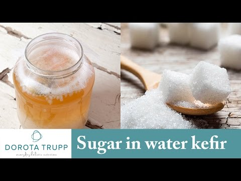Nutritional Tip | Too much sugar in my Water Kefir | Dorota Trupp