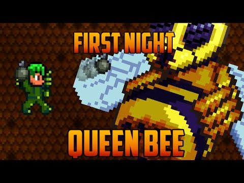 Terraria - Queen Bee first Night [Speedrun Challenge]