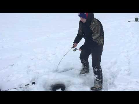 RDO - Bull Trout, Deep Mountain Lake Ice Fishing