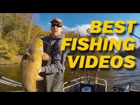 Best Fishing Videos No One Seen