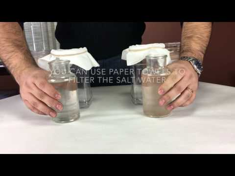 How to test the Purity of Himalayan Pink Edible Salt?