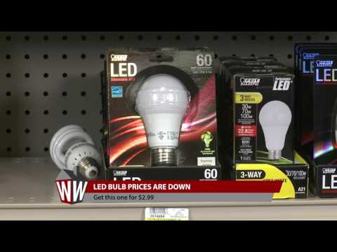 Ace 20 year LED Bulbs