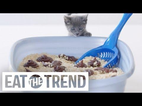 Cat Poop Fudge | Eat the Trend