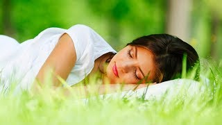 Sleep Music, Relaxing Music, Calm Music, Sleep Meditation, Insomnia, Zen, Spa, Sleep, Study, ☯1963
