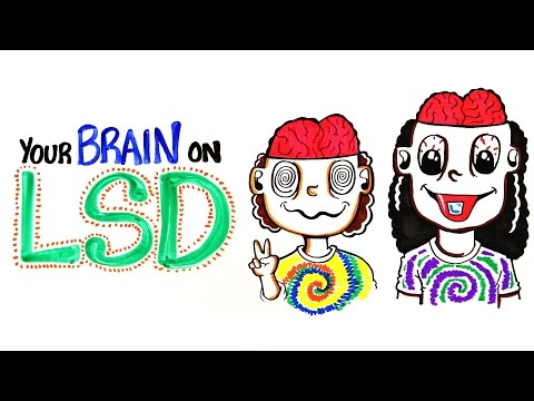 Your Brain on LSD and Acid