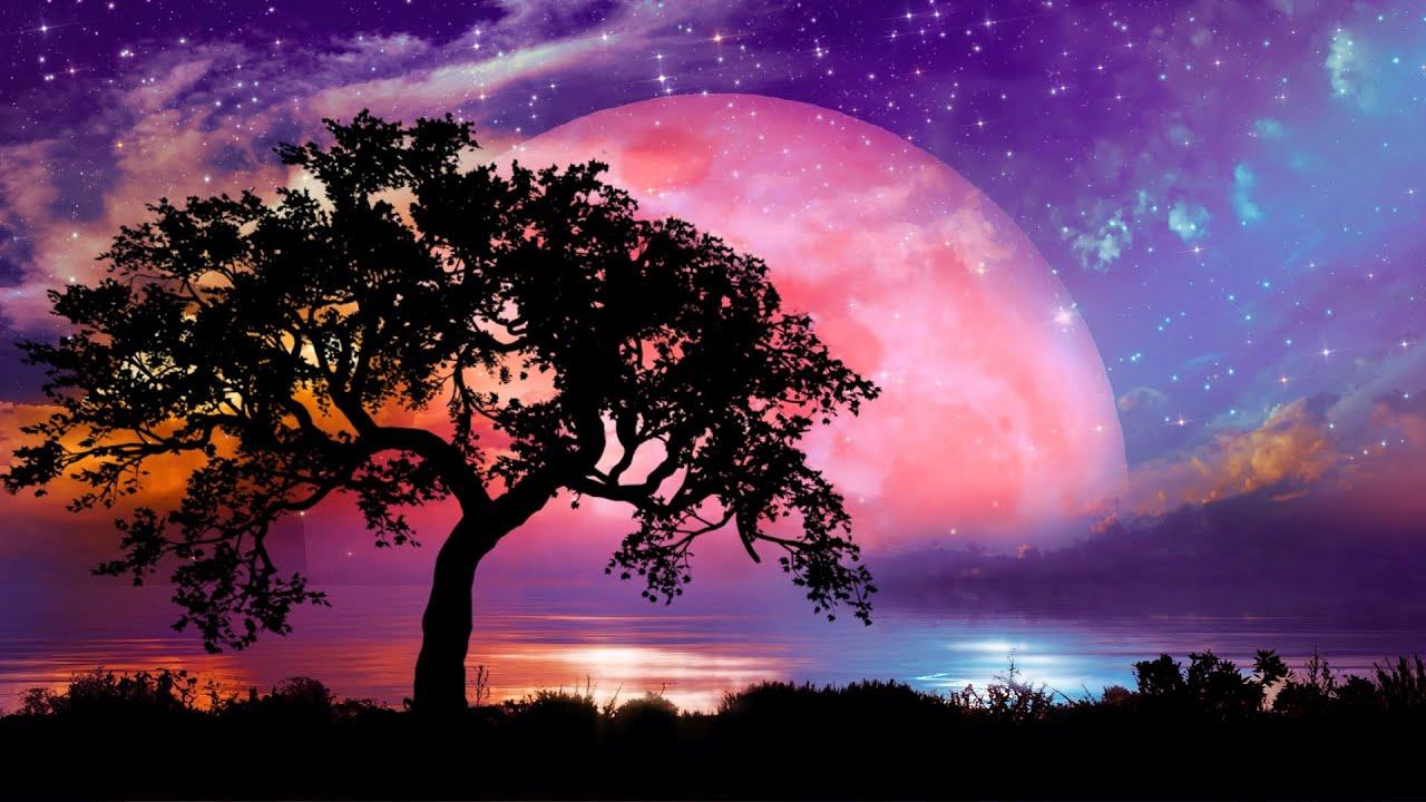 10시간 몽환적인 수면음악 🎵 스트레스 해소음악, 잠잘때 듣는 음악, 불면증치료음악, 수면유도음악 (Star Sky)