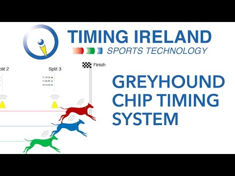 Greyhound Gallop Chip Timing System by Timing Ireland