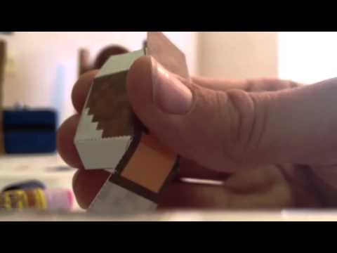 Pixeloapercraft minecraft character
