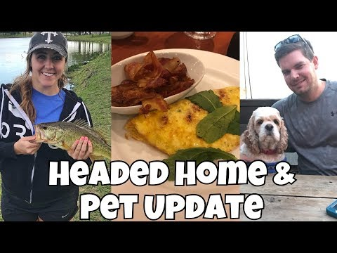 Vacation is Over | Update on my Pets!