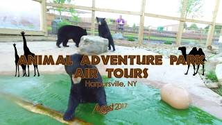 Download Animal Adventure Park Air Tours Video