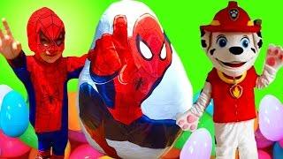 Paw Patrol Marshall Helps Spiderman on Egg