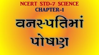 STD 7 SOCIAL SCIENCE - The Most Popular High Quality Videos