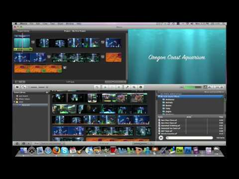 iMovie '09 Music and Sound Effects