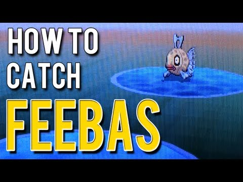 How to Catch Feebas - Pokemon Black 2 and White 2