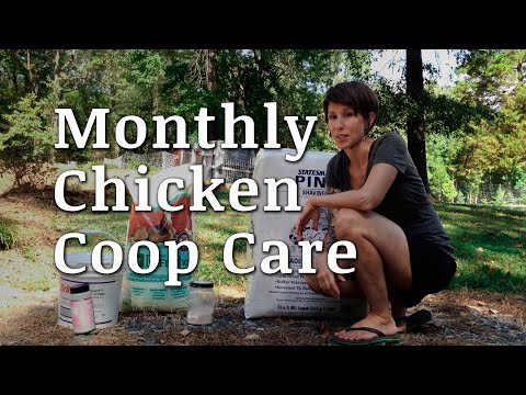 Monthly Chicken Coop Cleaning