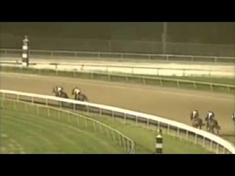 Race Fixing Allegations: Evangeline Downs Race 7, 6-19-15