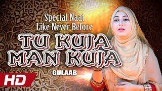 Special Naat Like Never Before    Tu Kuja Man Kuja    Gulaab    Hi-Tech Islamic - Beautiful Naat