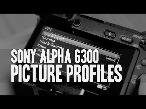 Sony a6300  Picture Profile Settings