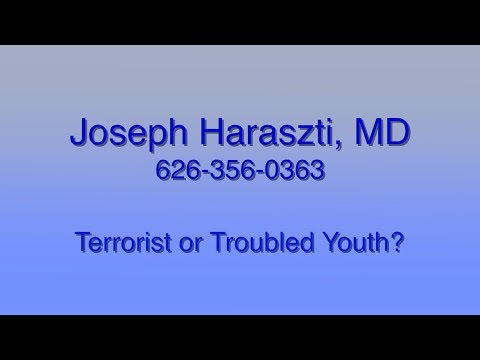 Terrorist or Troubled Youth?