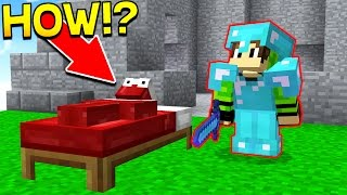 INVISIBLE BED WARS TROLLING! (Minecraft Bed Wars)