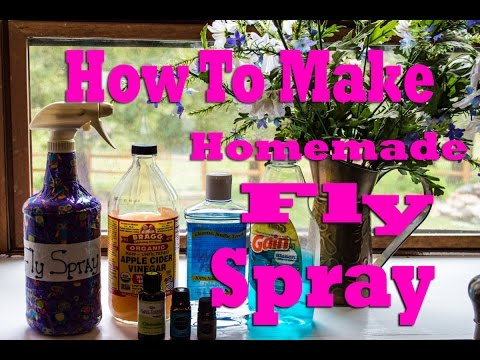 How To Make Horse Fly Spray - So Simple!