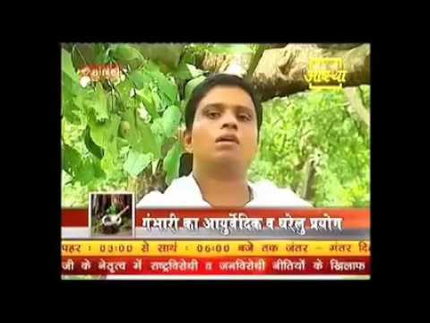 Ayurveda To Cure Acidity, Ulcer, Intestinal Infections In Diabetic Patients   Acharya Balkrishna