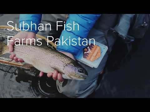 Fish farming in Pakistan ( Measuring a growth rate )