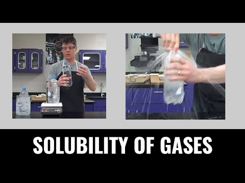 The Effect of Temperature on the Solubility of Gases - A Science Experiment with Mr Pauller