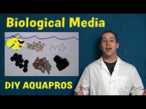 TOP 5 AQUARIUM FILTER MEDIA - BY DIY AQUAPROS