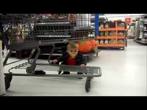 Knox goes shopping (Halloween)