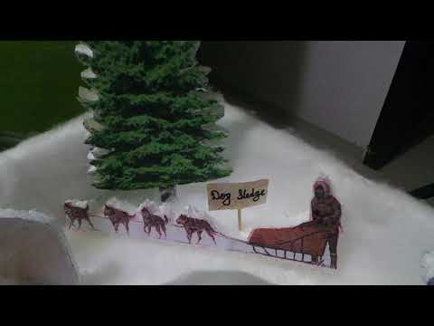 model /  SCIENCE PROJECT ON TYPES OF HOUSE IGLOO how to make (DURVIL)
