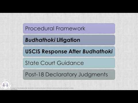 Post-18 Issues in Texas State Courts and Before USCIS