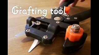 Demo of neat grafting tool