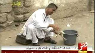 Funny Balochi Video