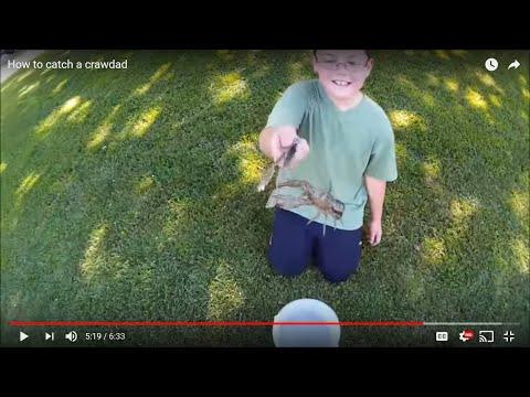 How to catch a crawdad