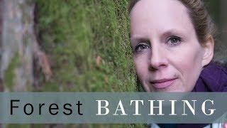 Forest Bathing Shinrin Yoku in Victoria BC at Francis King Regional Park  - Vlog 111