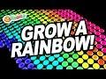 Orbeez Diy Grow A Rainbow Magic Light Box Official Orbeez