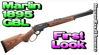 Download Marlin 1895 GBL First Look (Freedom Group Quality Inspection) Video