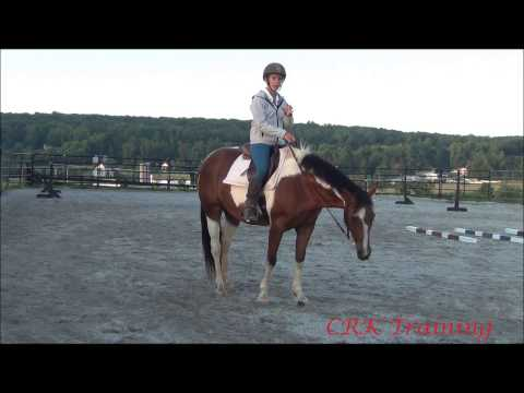 Slowing Down a Fast Horse