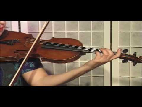 Violin Lesson - Theory - Half notes - D,A,E Strings